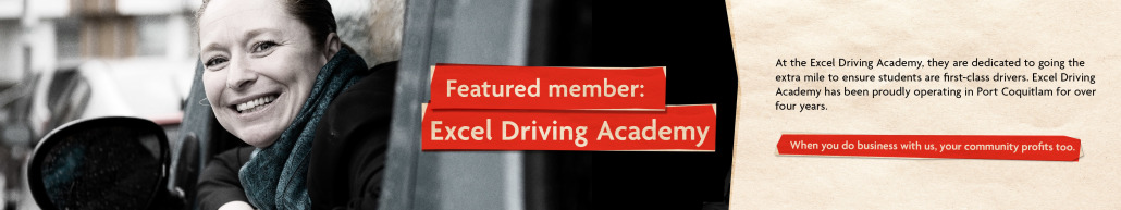 MemberFeature-ExcelDriving